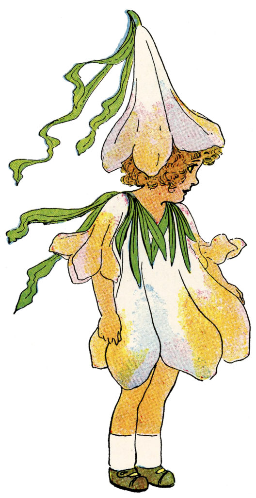 flower fairy crocus yellow clipart