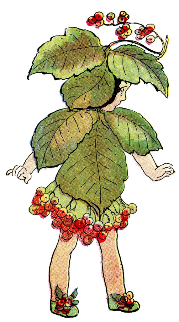 flower fairy red berries vintage illustration