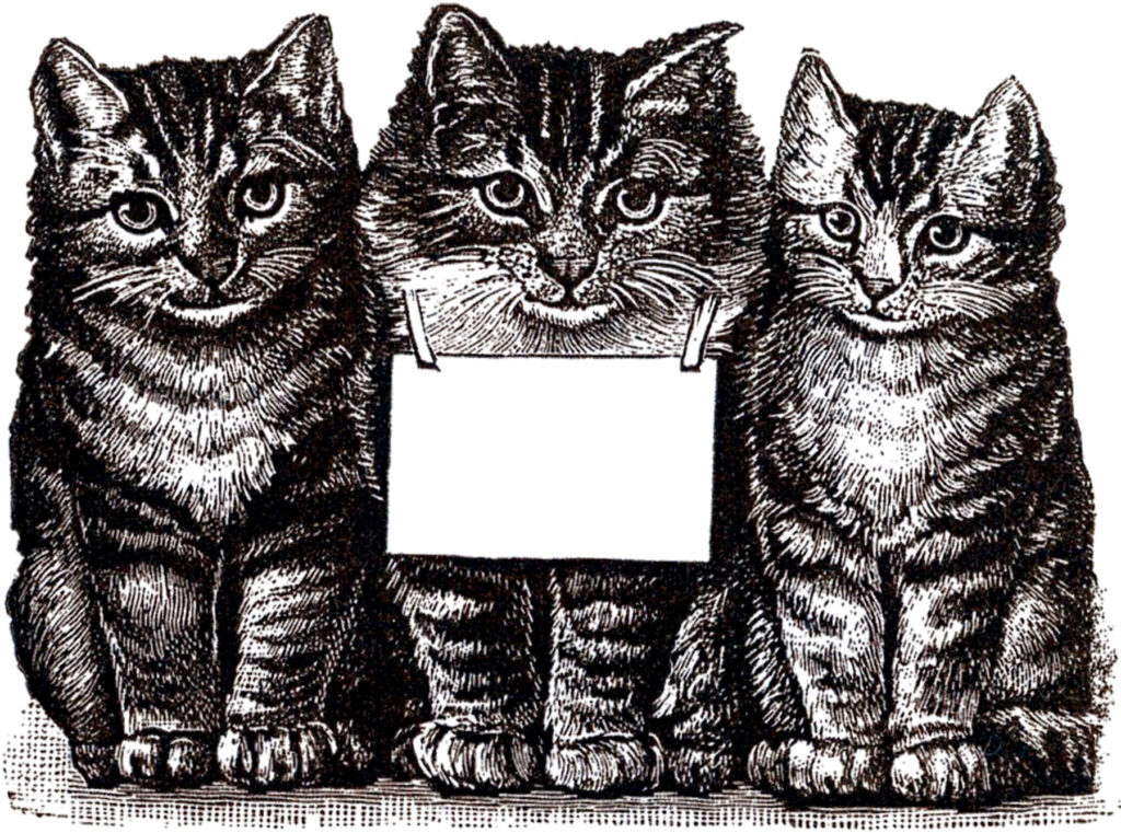 vintage tabby cat kittens clipart