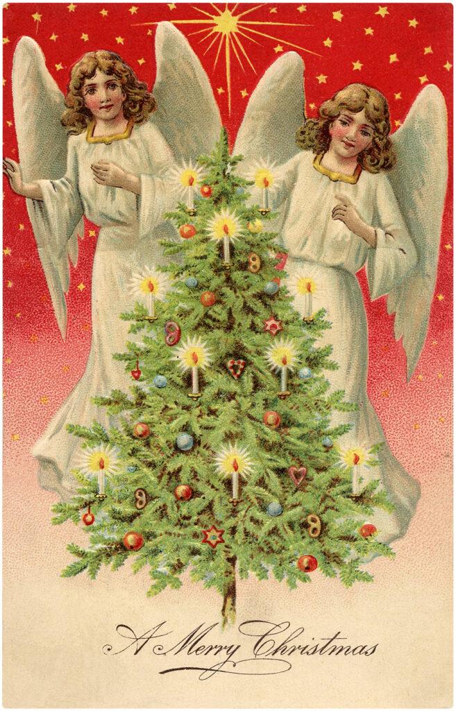 Stars Angel Twins Image