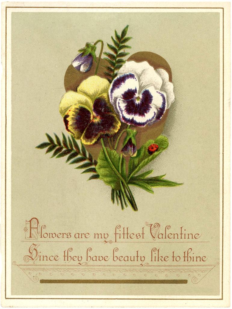 valentine pansies heart image