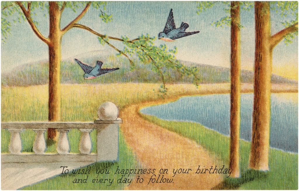 Happy Birthday Bluebirds Landscape Image