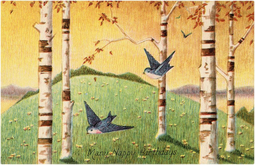 Happy Birthday Bluebirds and Birch Trees