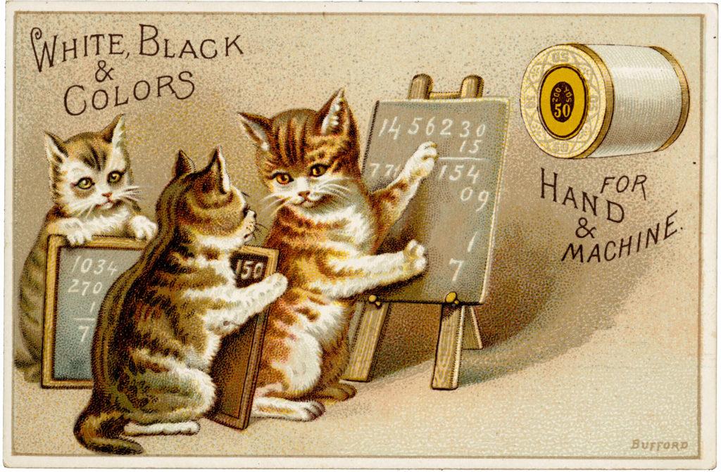 Homeschool Cats