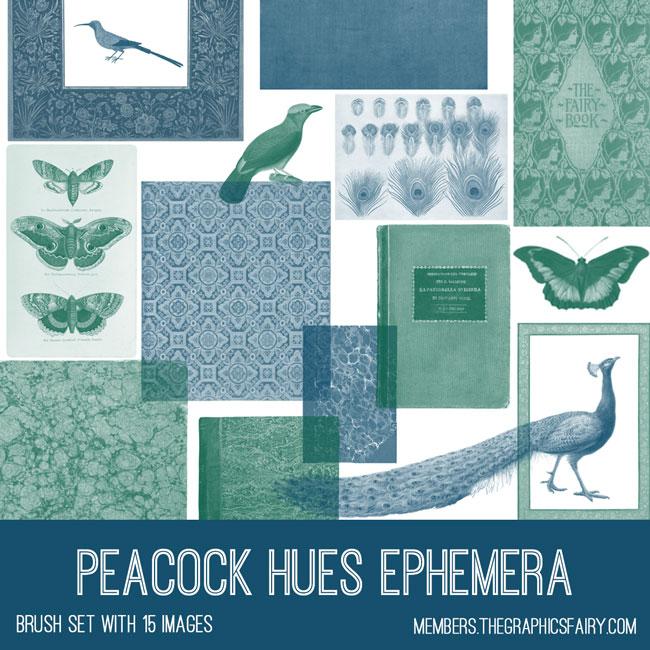 vintage peacock hues ephemera brush set