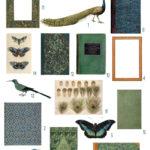 vintage peacock hues ephemera digital image bundle