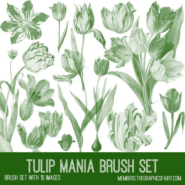 vintage tulip mania brush set