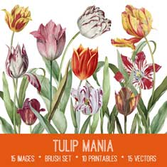 vintage tulip mania ephemera bundle