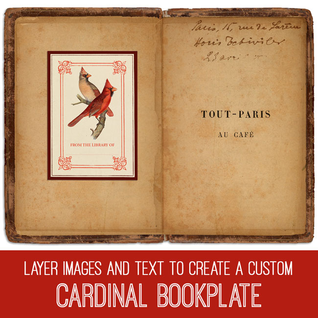 PSE Tutorial Layer Images and Text to Create a Custom Cardinal Bookplate