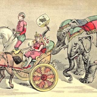 circus elephants chariot performer illustration