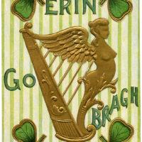 Golden Harp St Pats Image