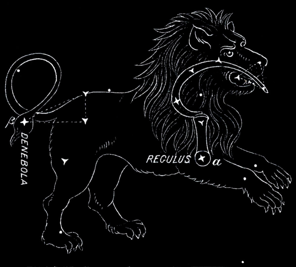 vintage astronomy leo constellation horoscope image