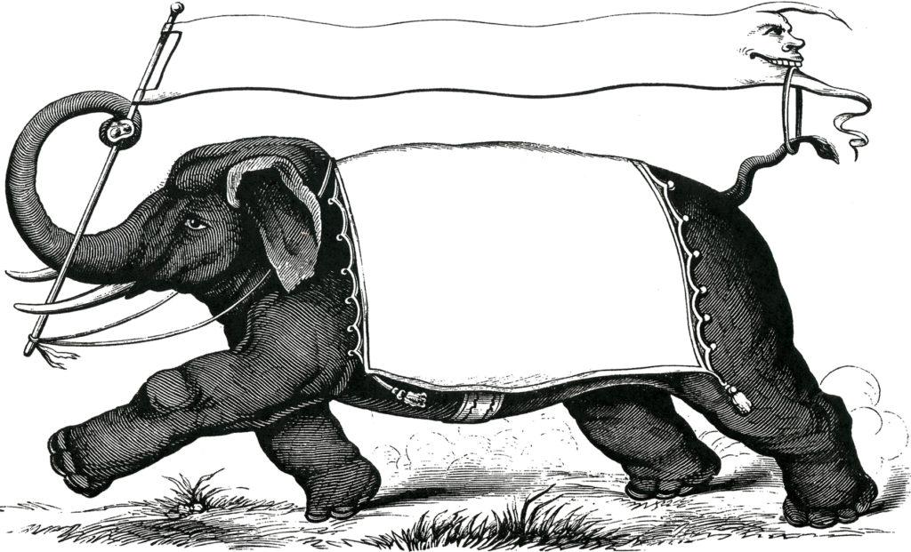 vintage elephant label illustration