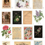 vintage scents & soaps ephemera digital image bundle