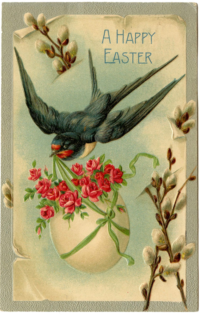 Easter bird swallow illustration