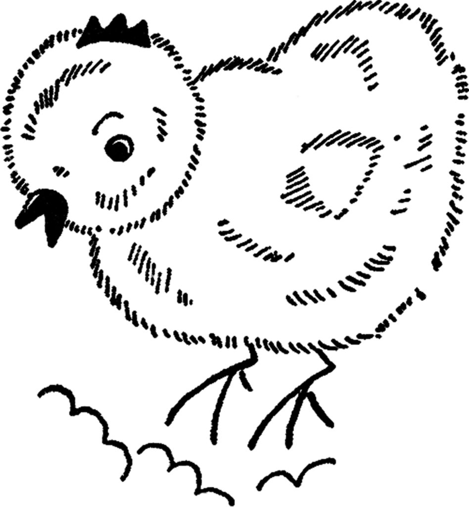 Easter chick line drawing illustration