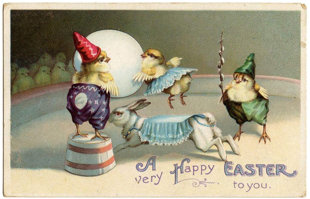 Easter Chicks Circus Image
