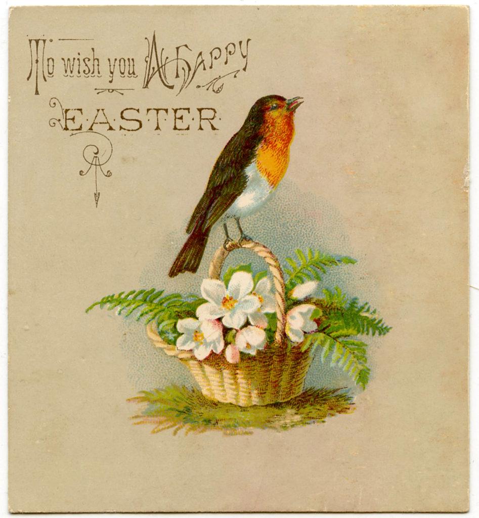 Easter Robin vintage typography image