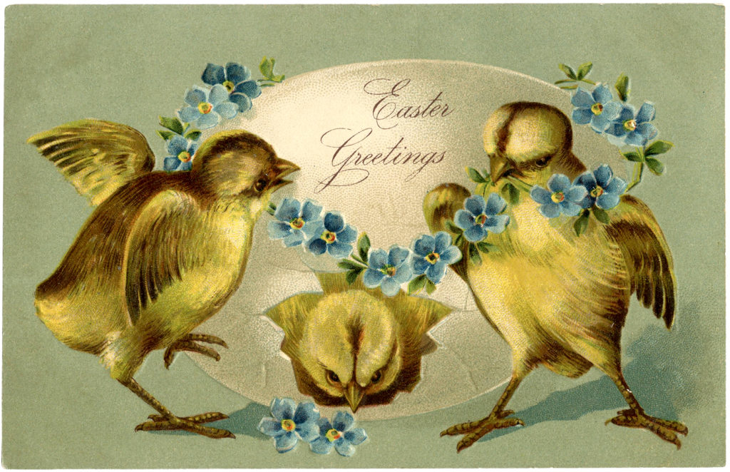 Easter chicks flowers egg image