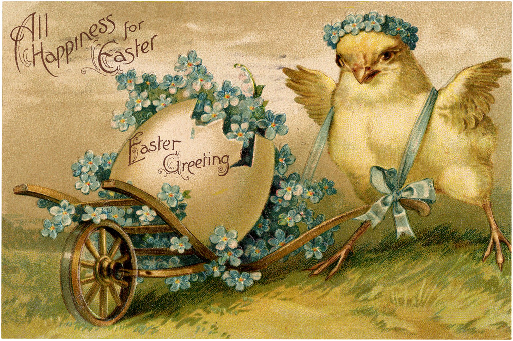 Easter chick wheelbarrow illustration