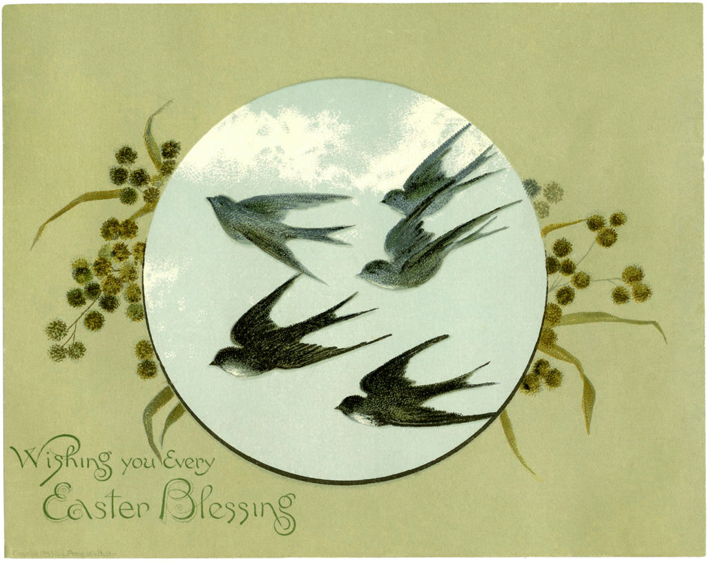 Easter birds flying clipart
