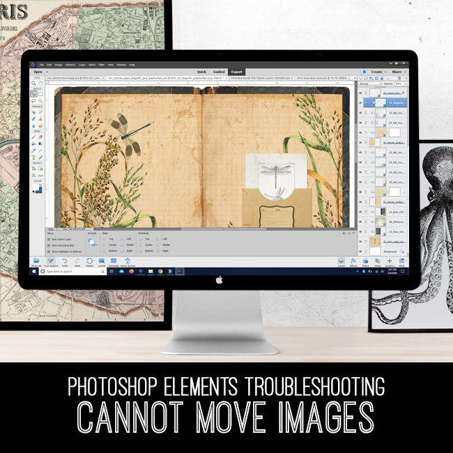 PSE Tutorial Troubleshooting Cannot Move Images