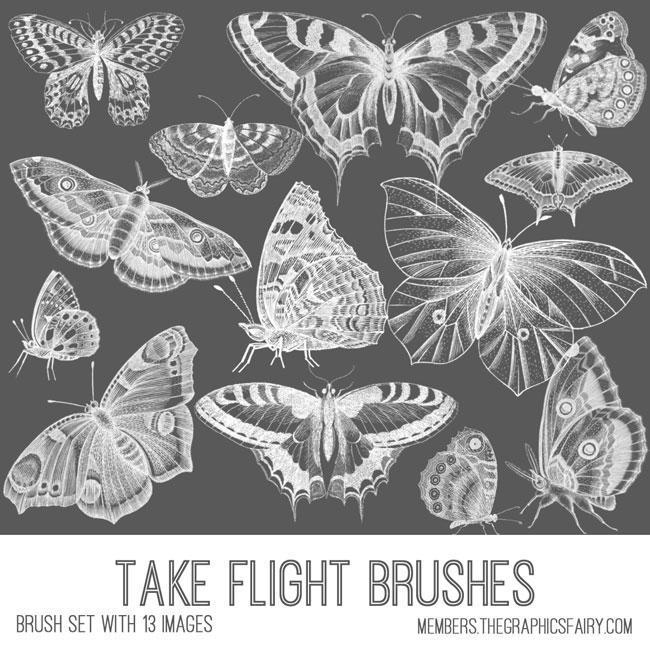 vintage take flight butterflies ephemera brush set