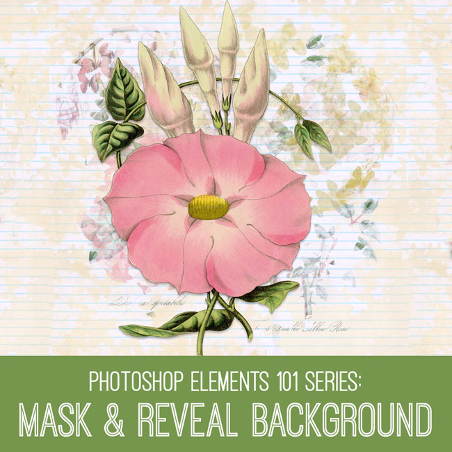 PSE Tutorial Mask & Reveal Background