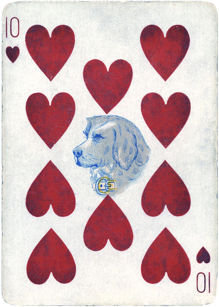 antique playing card dog image