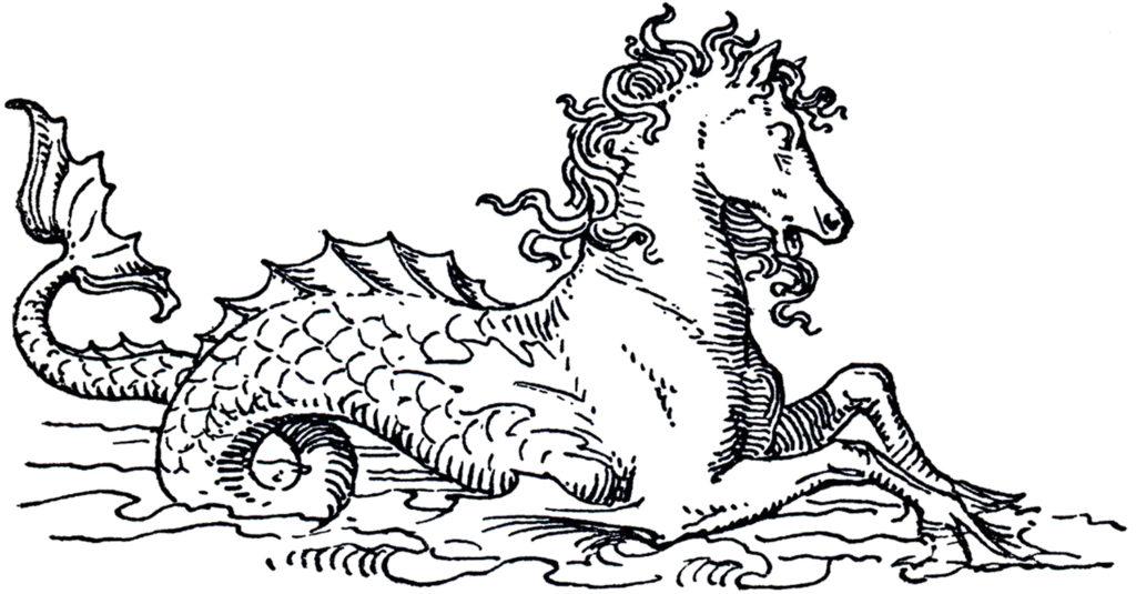 mythical seahorse vintage image