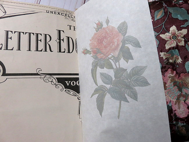 rose printed parchment image