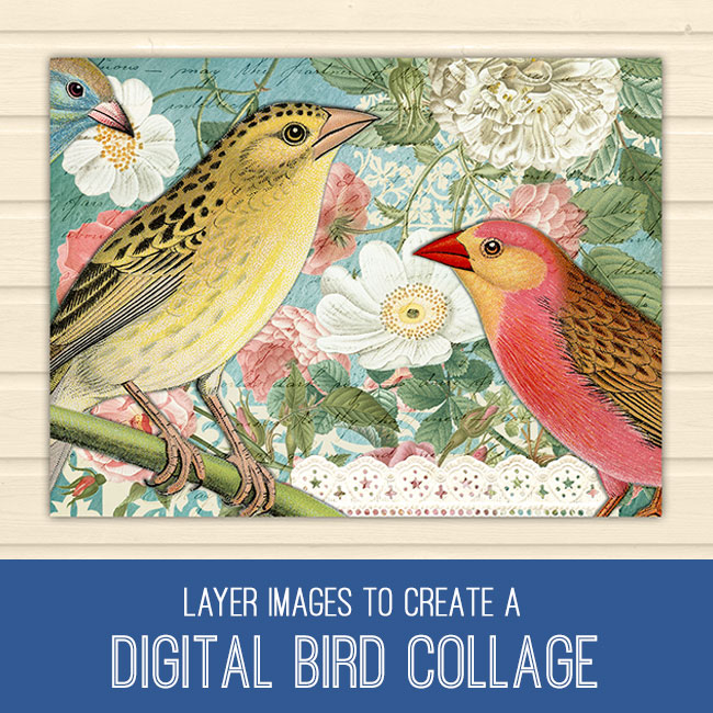 PSE Tutorial Layer Masks to Create a Digital Bird Collage