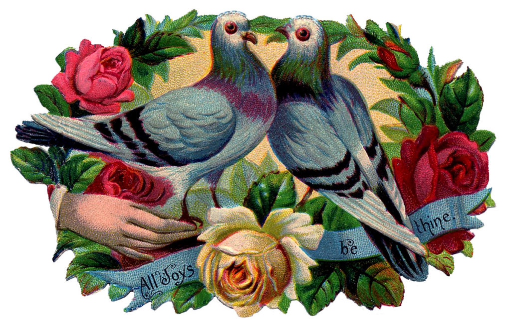 pigeons roses hand banner victorian image