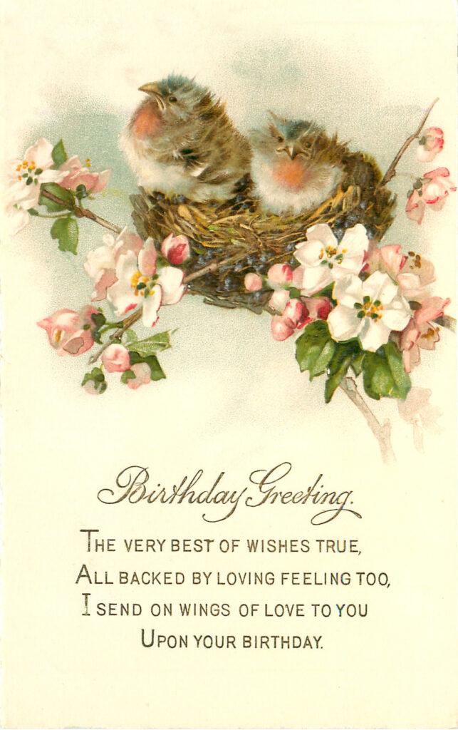 Happy Birthday Birds with Nest