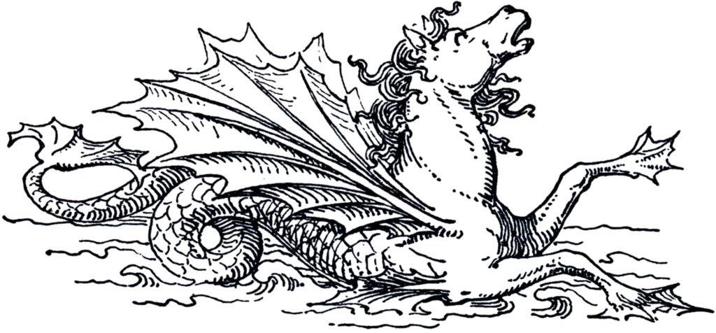 Mythical Sea Horse Image
