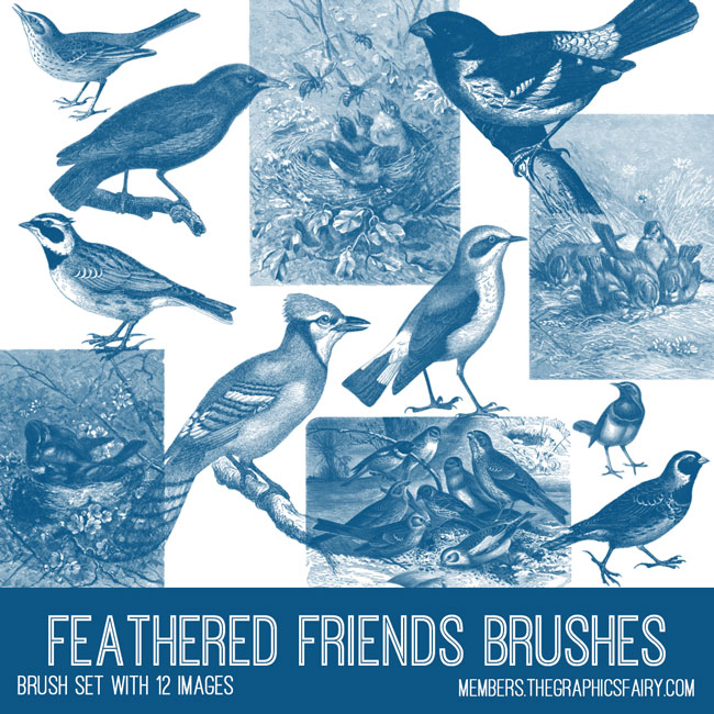 vintage feathered friends ephemera brush set