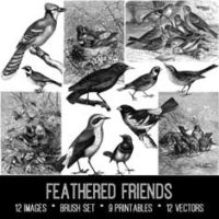 vintage feathered friends ephemera bundle