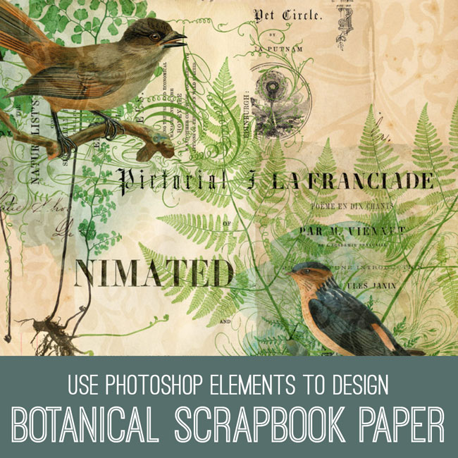 PSE tutorial Use Photoshop Elements to Design Botanical Scrapbook Paper