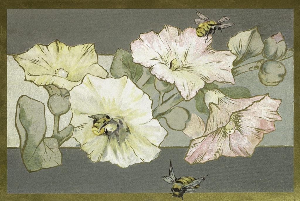 hollyhocks border bee vintage clipart