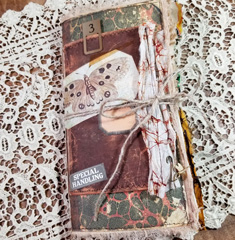 Natualist's Junk Journal Lynne Morgado