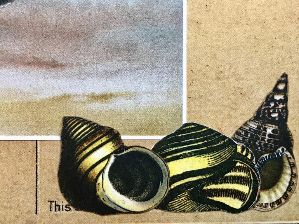 Seashore Junk Journal page shells