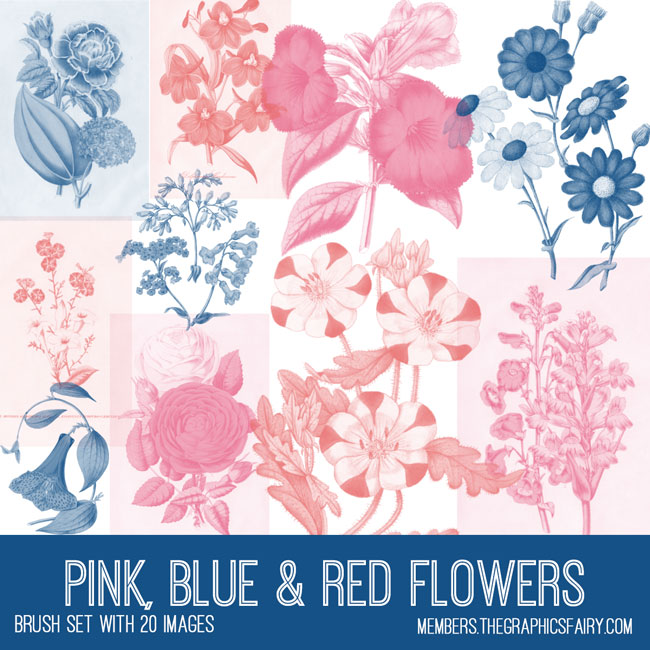 vintage pink blue & red florals ephemera brush set
