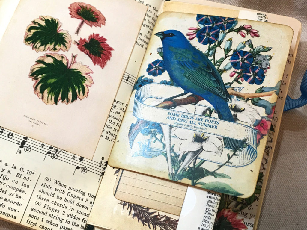 blue bird ephemera