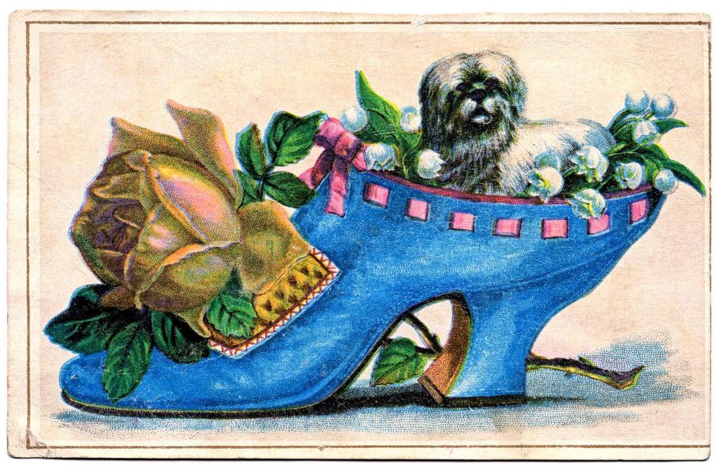 Victorian Show Dog Image