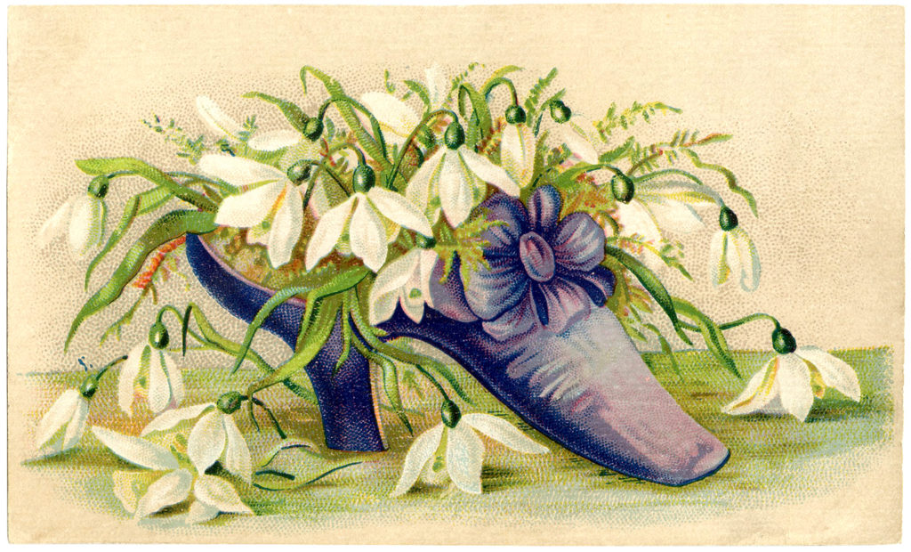Victorian purple ladies shoe flowers illustration