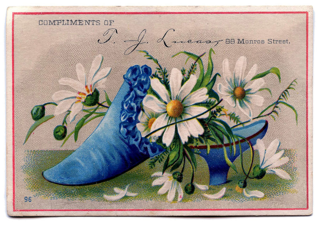 antique blue shoe daisies illustration