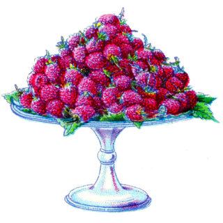 purple raspberries cake stand vintage image