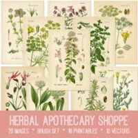 vintage herbal apothecary shoppe ephemera bundle