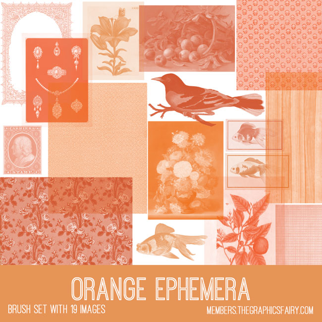 vintage orange ephemera brush set
