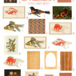 vintage orange ephemera digital image bundle